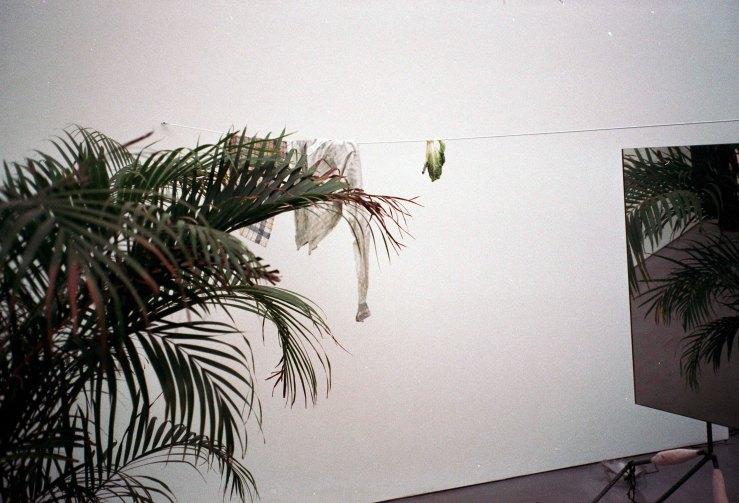 Untitled (36)