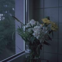 속초에서의 겨울_엘리자 수아 뒤사펭 (북레시피)