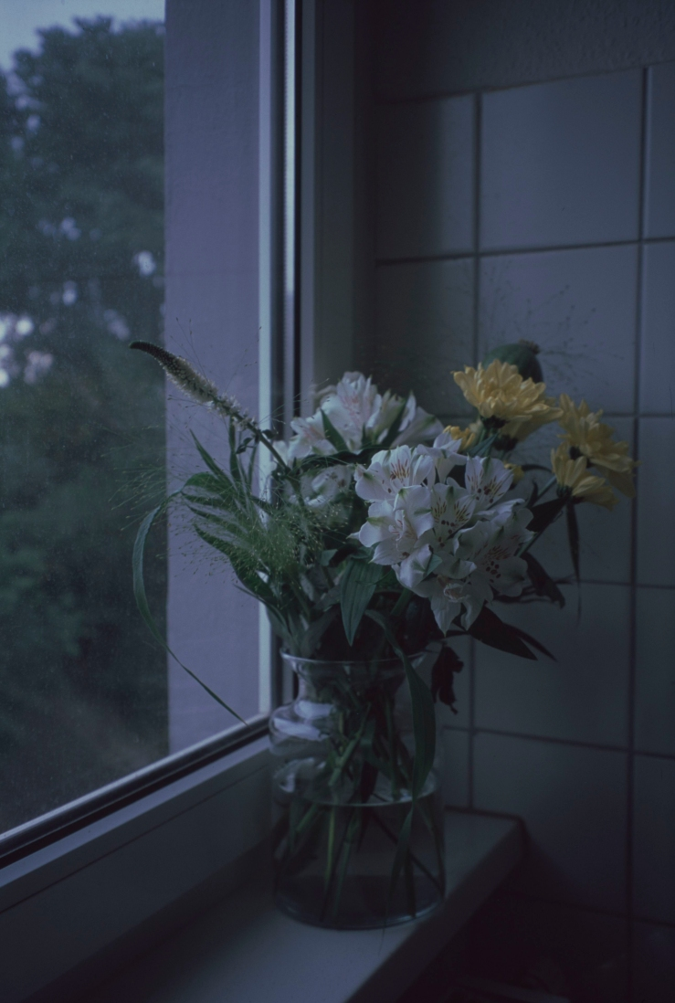 Untitled (19)